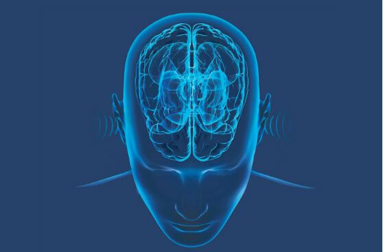 Brain Tinnitus Retraining Therapy